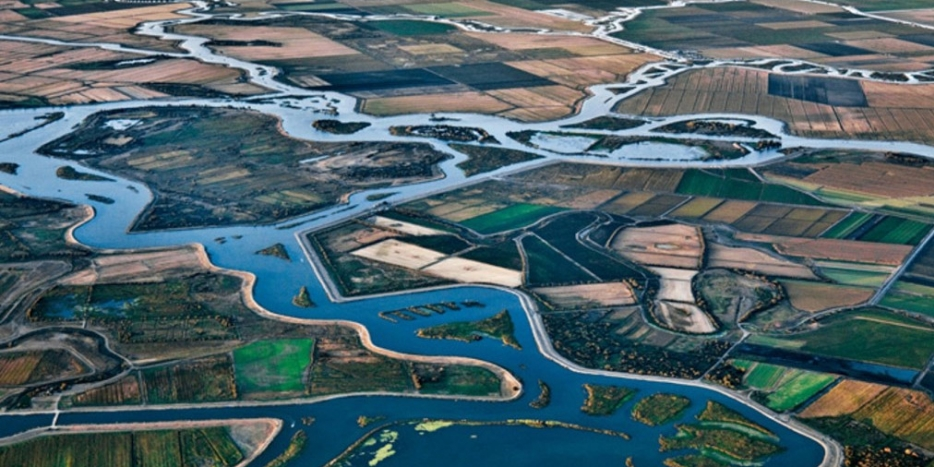 Water and farmland in the Delta
