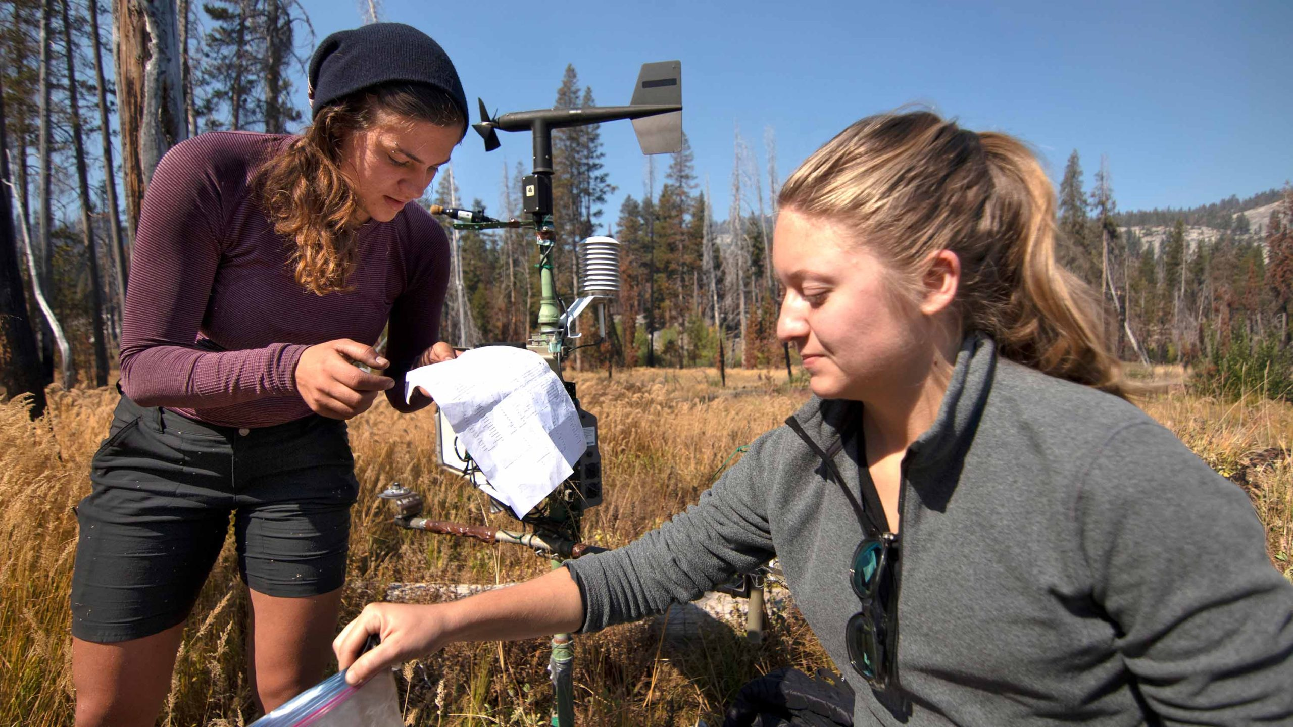 Students study fire-water interactions in Yosemite